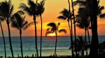 How to Have an Amazing Time in Honolulu